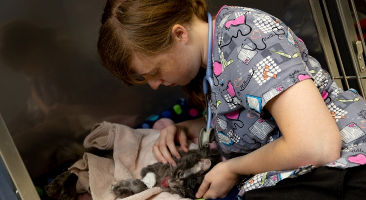 vet tech student with cat
